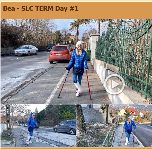 Bea - SLC TERM (3 parts)